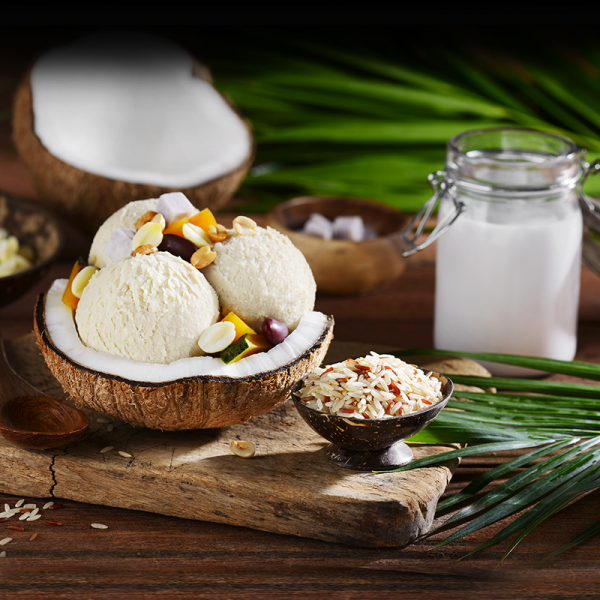 Coconut Ice Cream  with Brown Rice